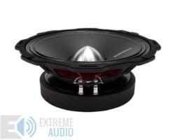 Rockford Fosgate Punch Pro PPS8-10 auto hi-fi középmélysugárzó