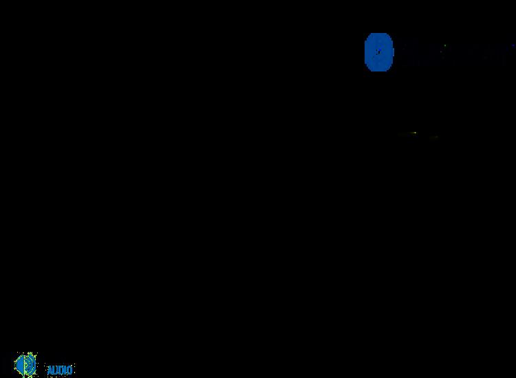 Marantz RX101 Bluetooth modul