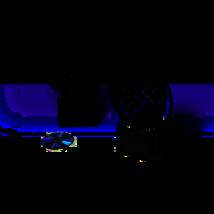 Bose 131 kültéri/hajó hangszóró pár