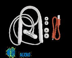 JBL Live 220BT nyakpántos fülhallgató, fehér